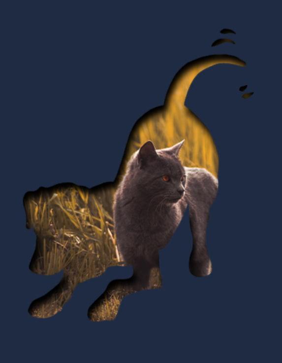 Decorative Cat & Dog Shadows